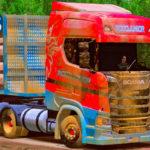 Skins Scania S RodoJunior Suja