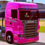 Skins Scania R Rosa Bellaver