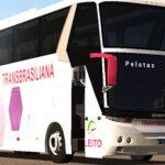 Skins Comil Vision Viação Transbrasiliana Rosa