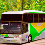 Skins Paradiso GV 1150 Viação Brasil Sul