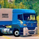 Conjunto de Skins Mercedes Benz Axor No BITREM