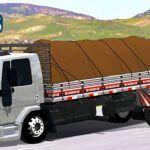 Skins Ford Cargo Truck 'EXCLUSIVO' PRATA