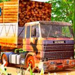 Skins Scania LK VELHA TODA ENGERRUJADA NA CARRETA GRANEL CARREGADA DE MADEIRAS