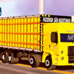 Skins VW Constellation Amarelo Boaideiro Qualificado Truck ROMEU E JULIETA